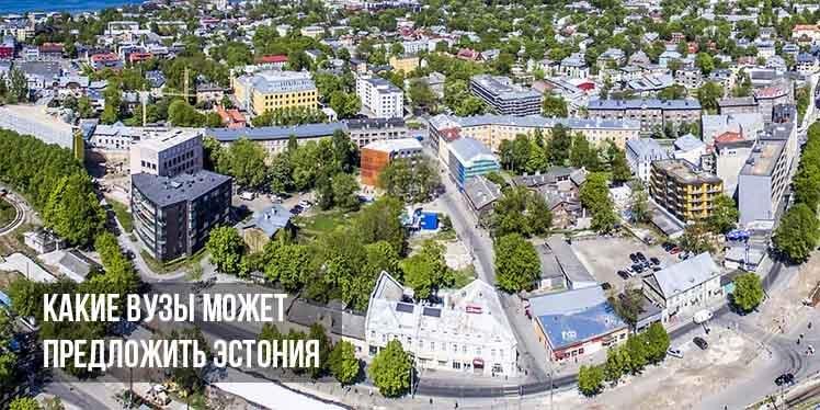 Как русскоязычному получить образование в Эстонии в 2021 году?